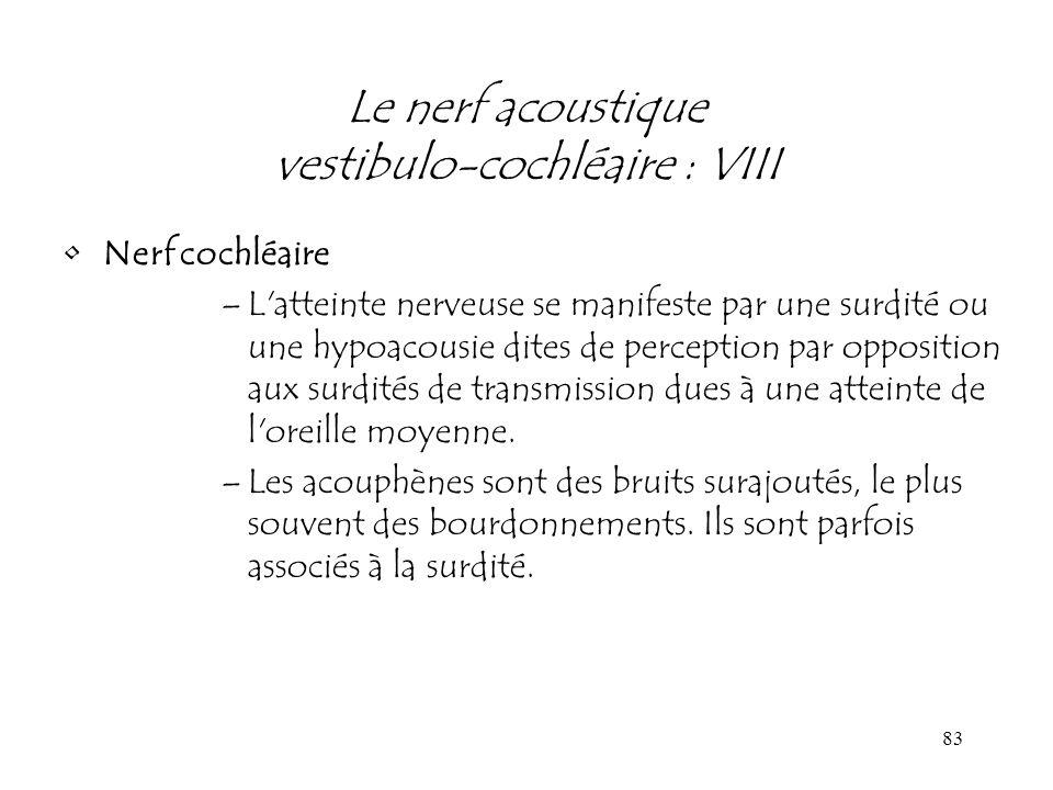 Le nerf acoustique vestibulo-cochléaire : VIII