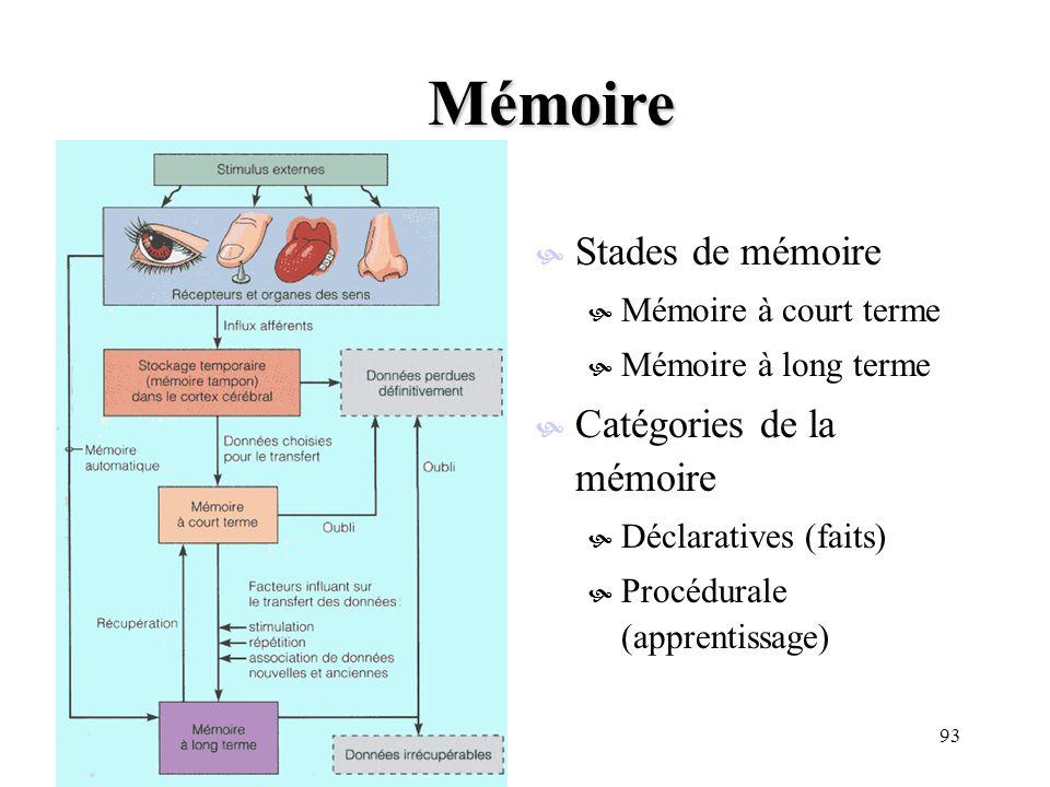 Mémoire Stades de mémoire Catégories de la mémoire