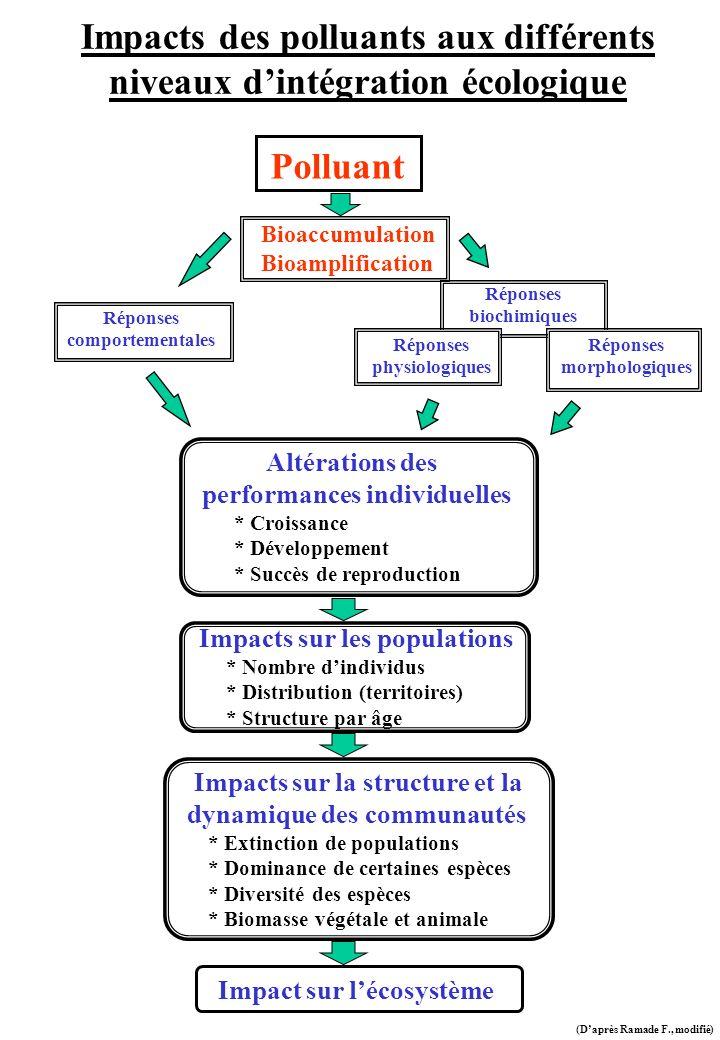 Impacts des polluants aux différents niveaux d'intégration écologique
