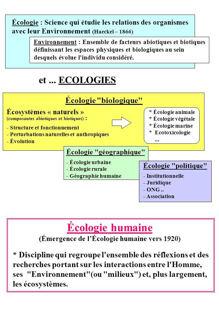 (Émergence de l'Écologie humaine vers 1920)