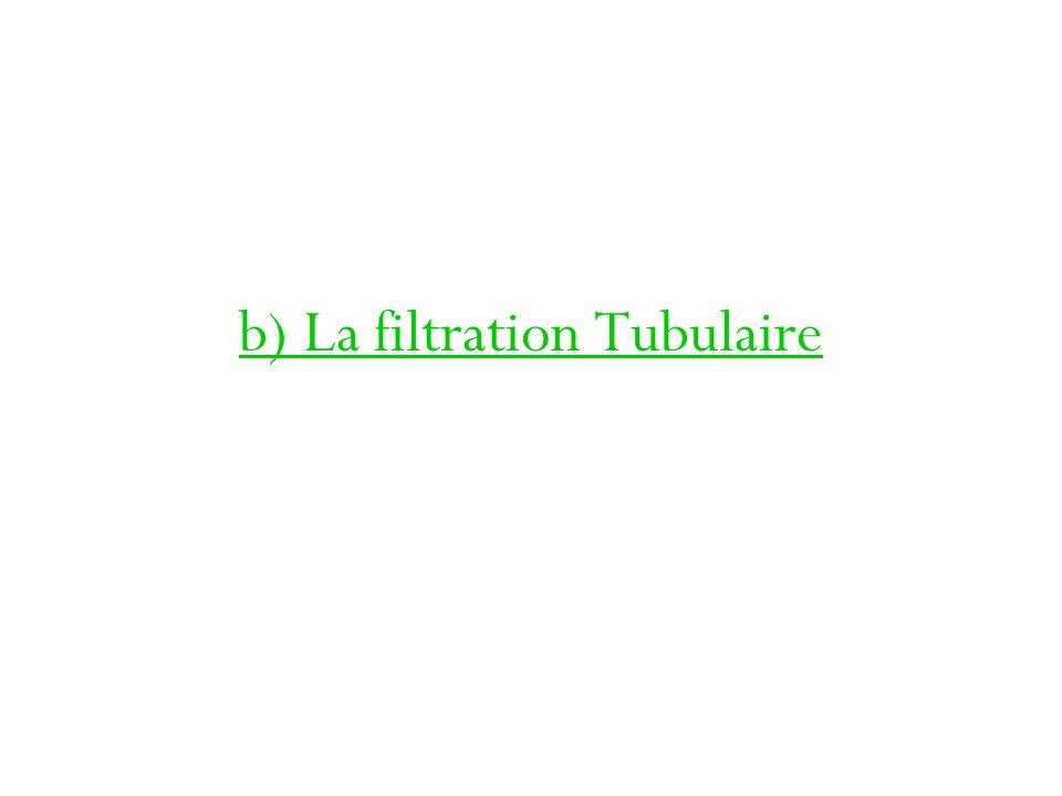 b) La filtration Tubulaire