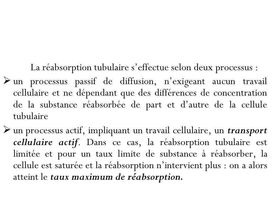 La réabsorption tubulaire s'effectue selon deux processus :