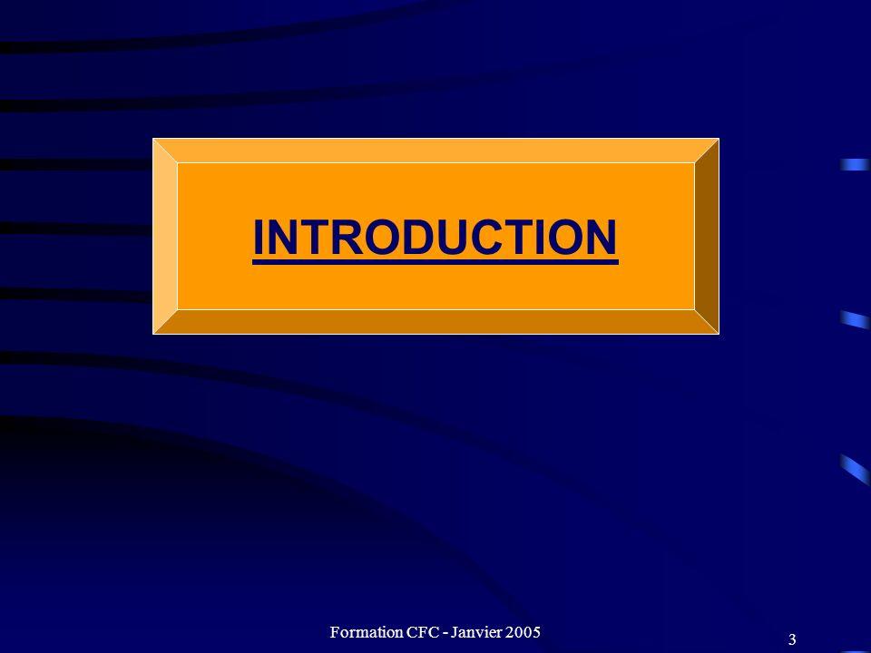 Formation CFC - Janvier 2005