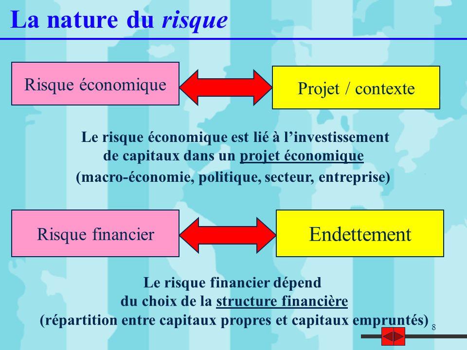 La nature du risque Endettement Risque économique Projet / contexte