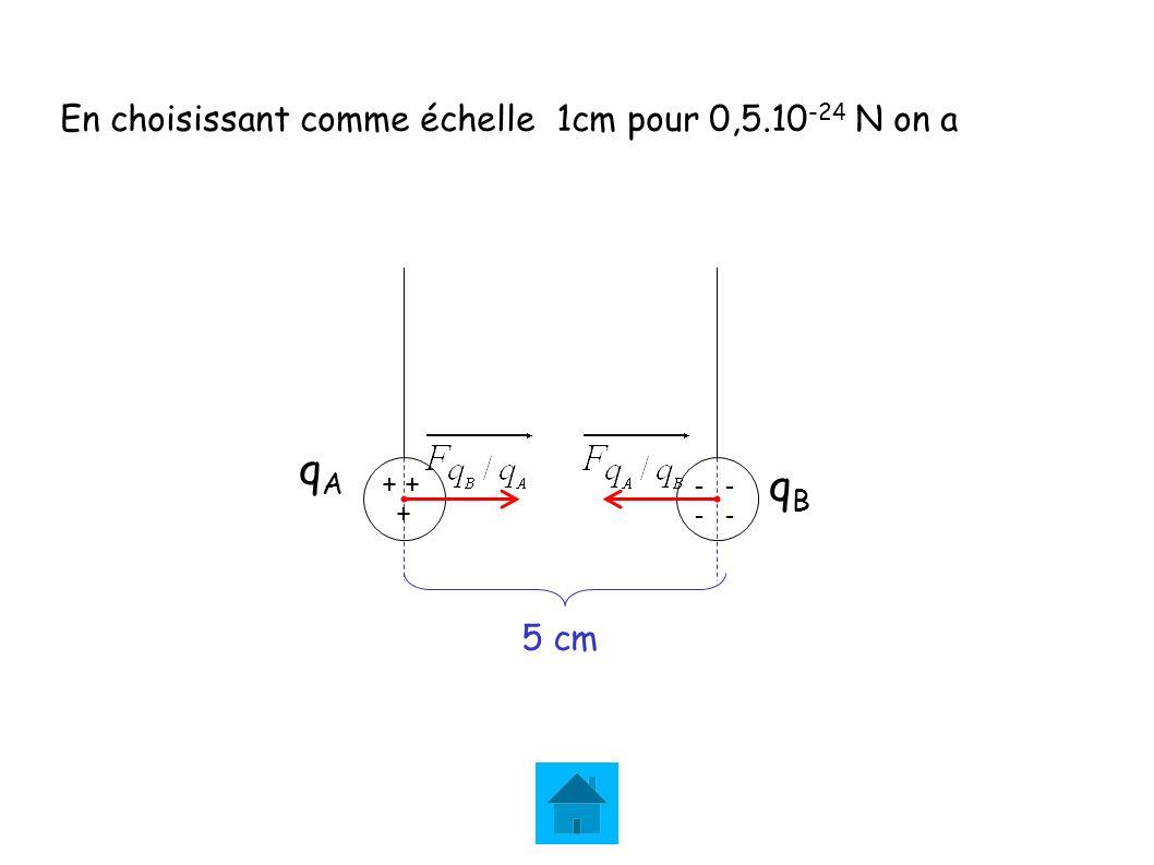 qA qB En choisissant comme échelle 1cm pour 0,5.10-24 N on a 5 cm + +