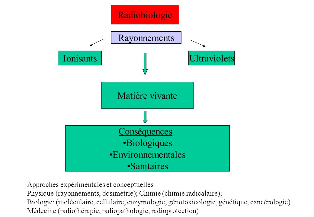 Radiobiologie Rayonnements Ionisants Ultraviolets Matière vivante