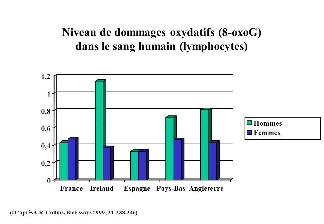 Niveau de dommages oxydatifs (8-oxoG) dans le sang humain (lymphocytes)