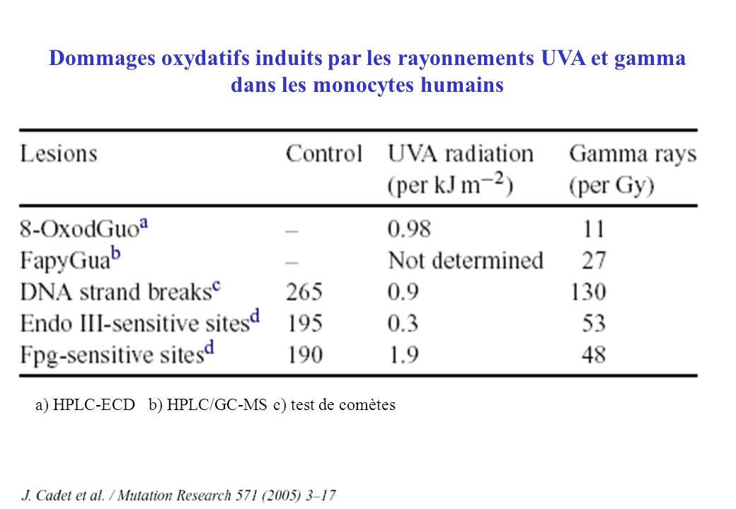 Dommages oxydatifs induits par les rayonnements UVA et gamma