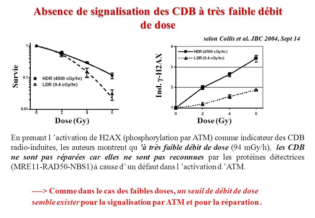 Absence de signalisation des CDB à très faible débit de dose
