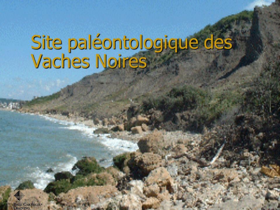 Site paléontologique des Vaches Noires