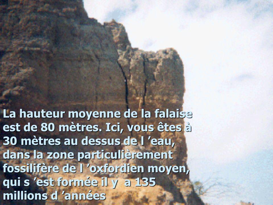 La hauteur moyenne de la falaise est de 80 mètres