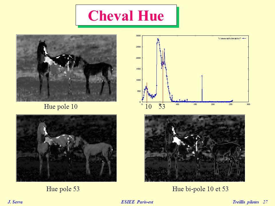 Cheval Hue Hue pole 10 10 53 Hue pole 53 Hue bi-pole 10 et 53