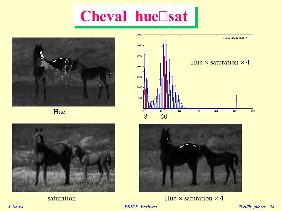 Cheval hue´sat Hue ´ saturation ´ 4 Hue 8 60 saturation