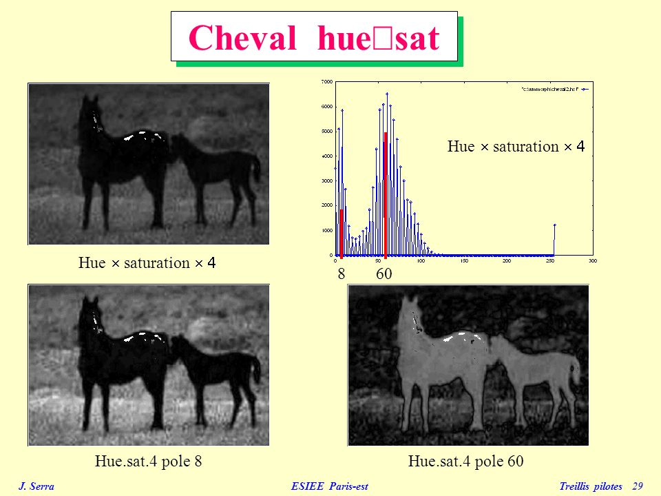 Cheval hue´sat Hue ´ saturation ´ 4 Hue ´ saturation ´ 4 8 60