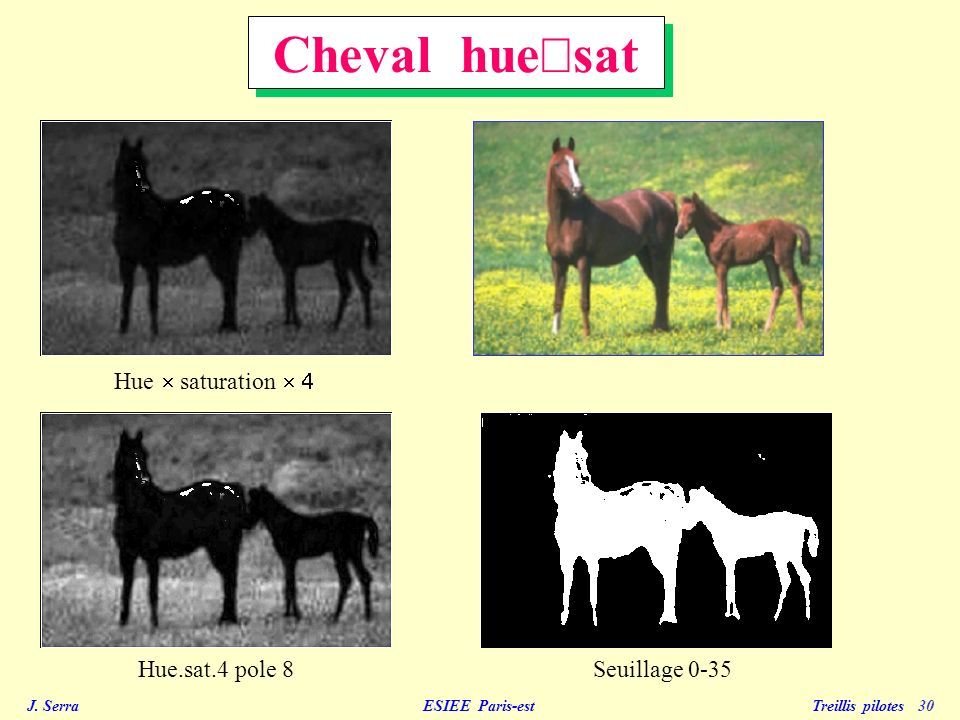 Cheval hue´sat Hue ´ saturation ´ 4 Hue.sat.4 pole 8 Seuillage 0-35