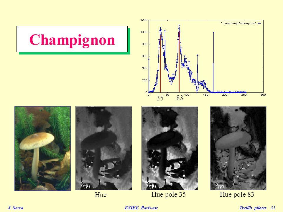 Champignon 35 83 Hue Hue pole 35 Hue pole 83