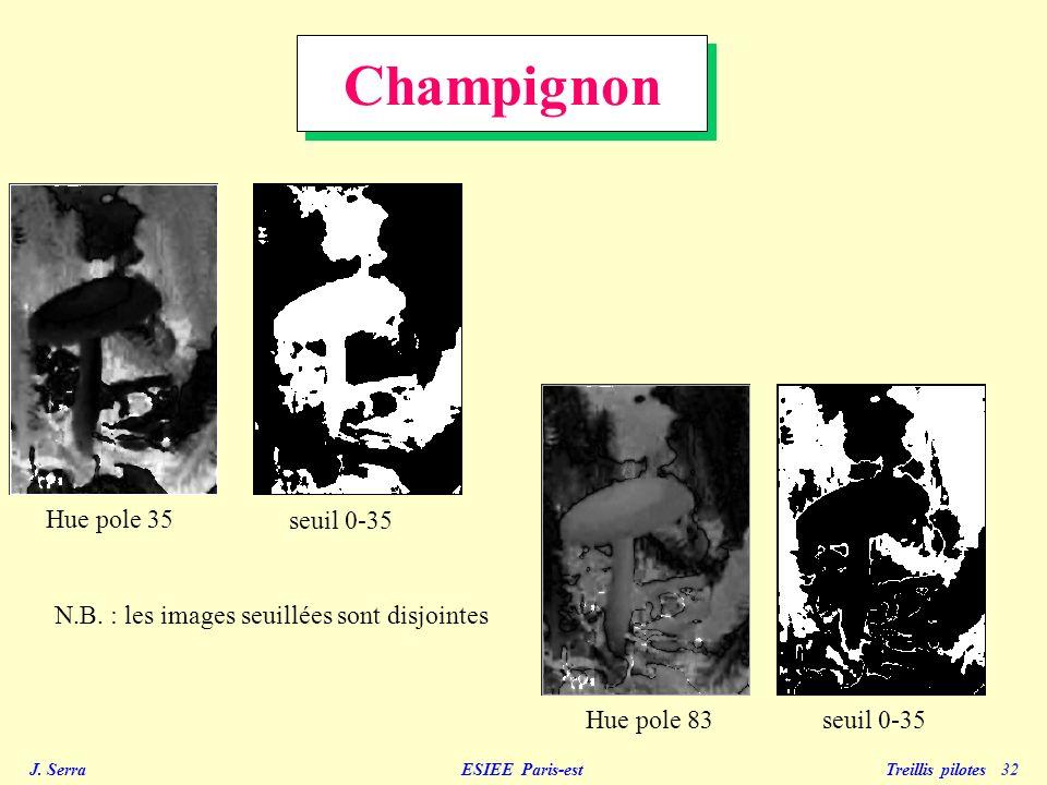 Champignon Hue pole 35 seuil 0-35