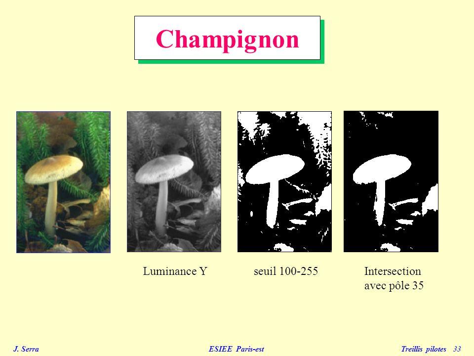 Champignon Luminance Y seuil 100-255 Intersection avec pôle 35
