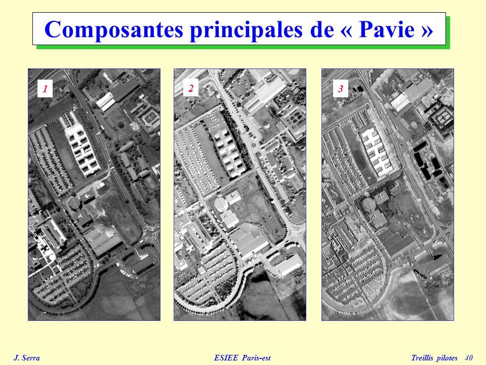 Composantes principales de « Pavie »