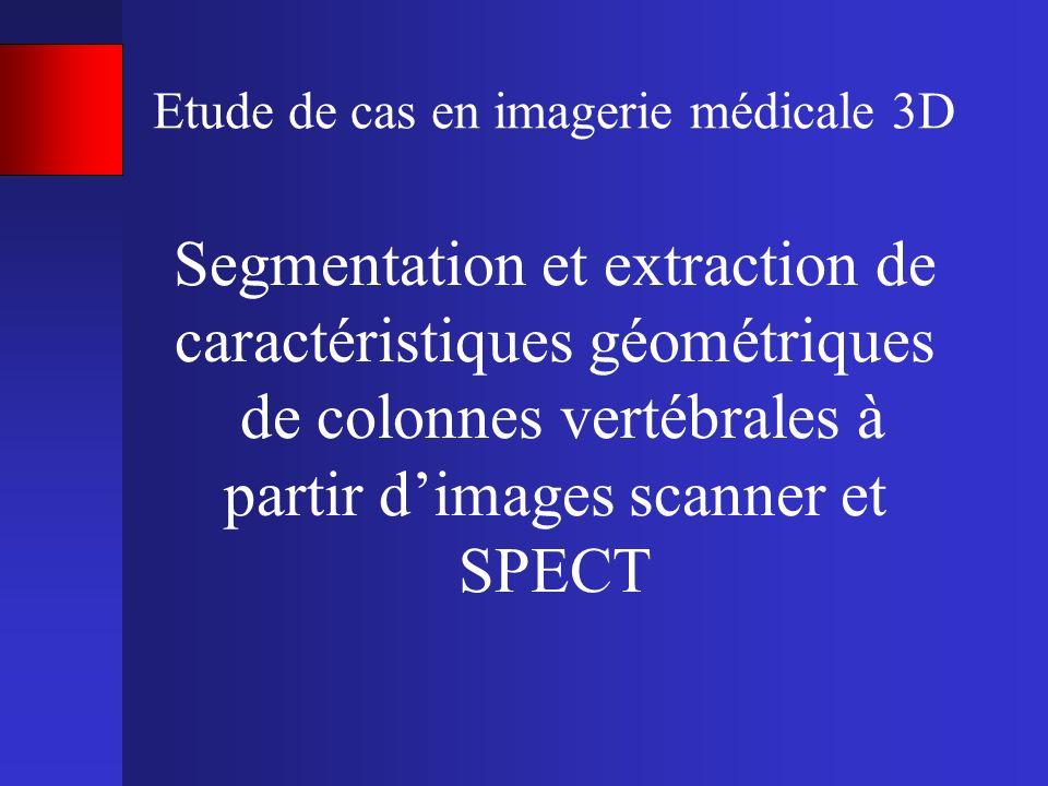 Etude de cas en imagerie médicale 3D