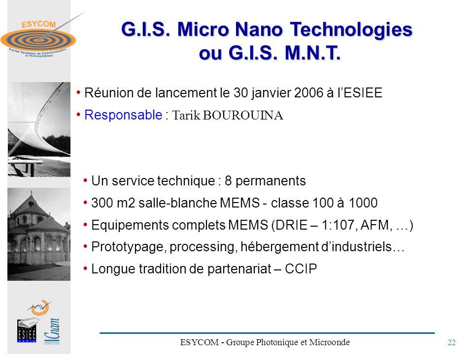 G.I.S. Micro Nano Technologies ou G.I.S. M.N.T.