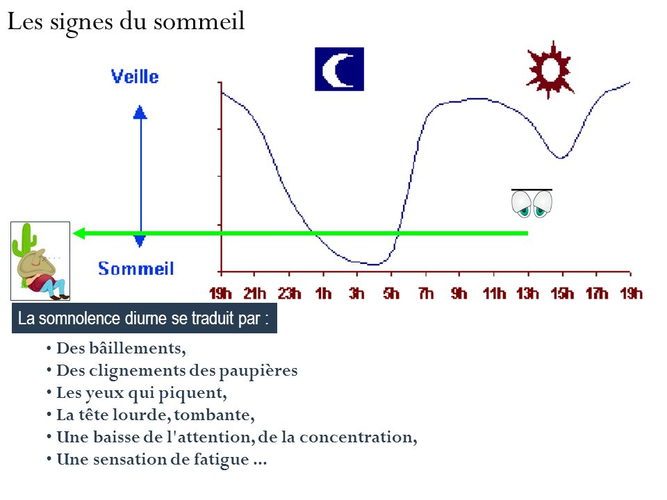 Les signes du sommeil La somnolence diurne se traduit par :
