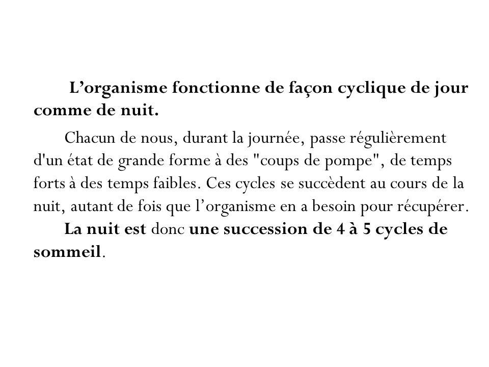 L'organisme fonctionne de façon cyclique de jour comme de nuit.
