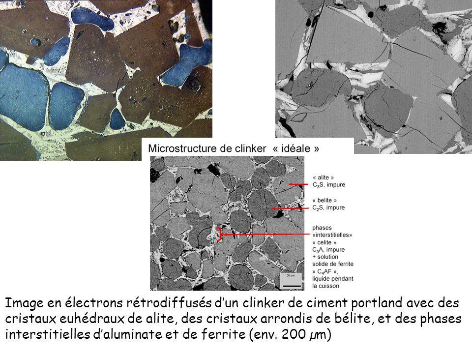 Image en électrons rétrodiffusés d'un clinker de ciment portland avec des cristaux euhédraux de alite, des cristaux arrondis de bélite, et des phases interstitielles d'aluminate et de ferrite (env.