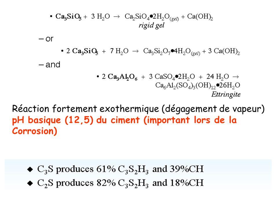 Réaction fortement exothermique (dégagement de vapeur)