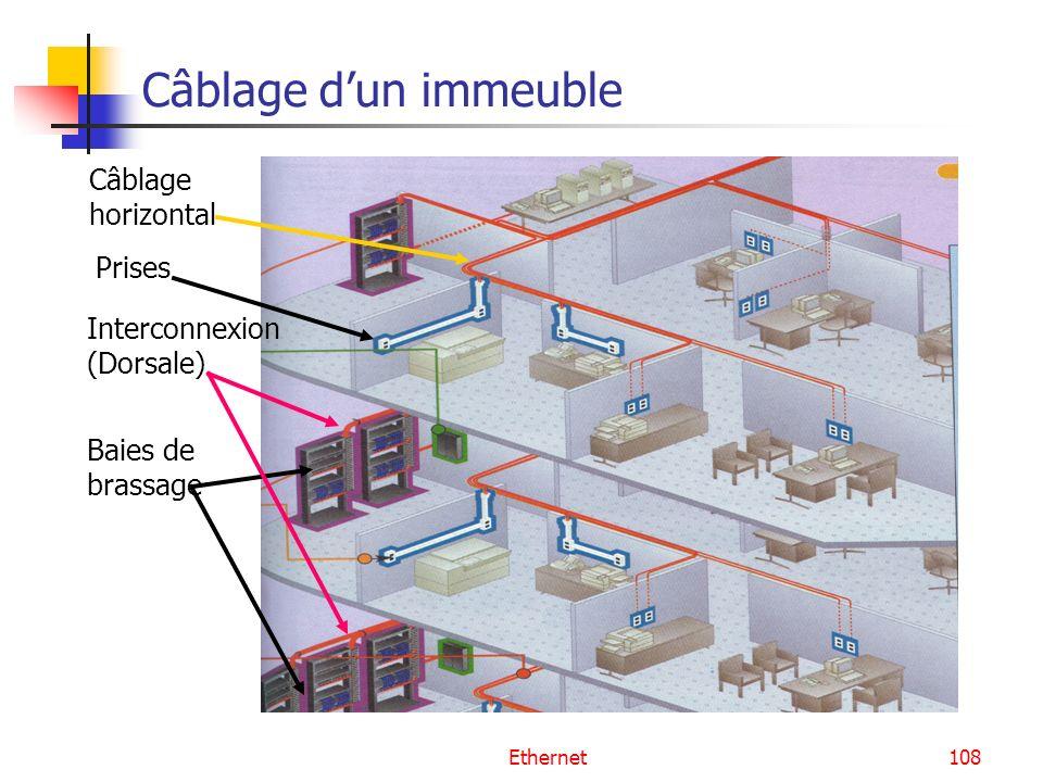 Câblage d'un immeuble Câblage horizontal Prises Interconnexion