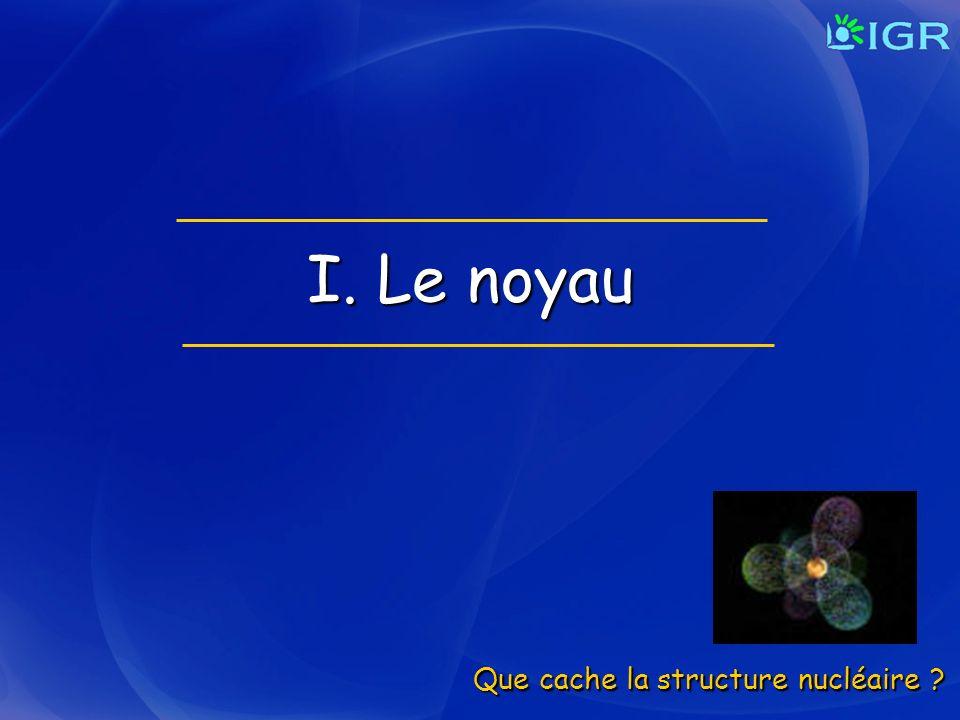 I. Le noyau Que cache la structure nucléaire
