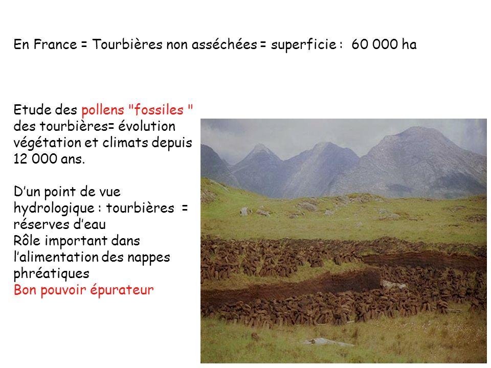 En France = Tourbières non asséchées = superficie : 60 000 ha