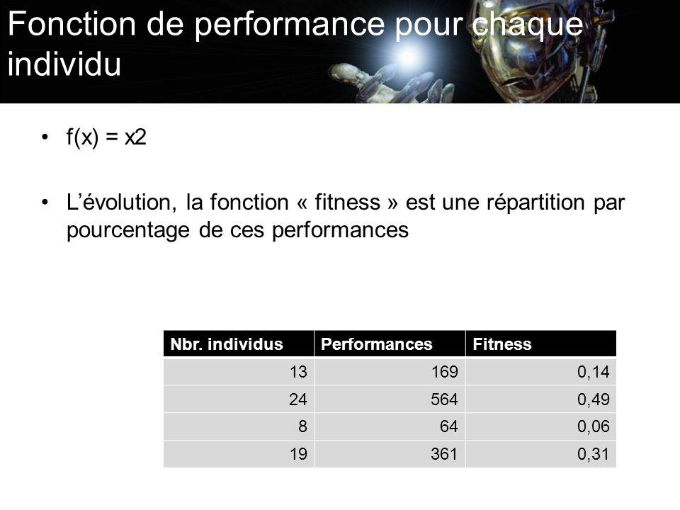 Fonction de performance pour chaque individu