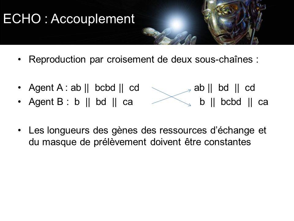 ECHO : Accouplement Reproduction par croisement de deux sous-chaînes :