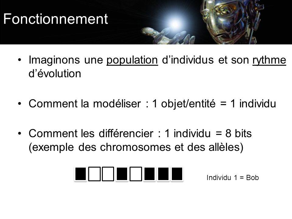 Fonctionnement Imaginons une population d'individus et son rythme d'évolution. Comment la modéliser : 1 objet/entité = 1 individu.