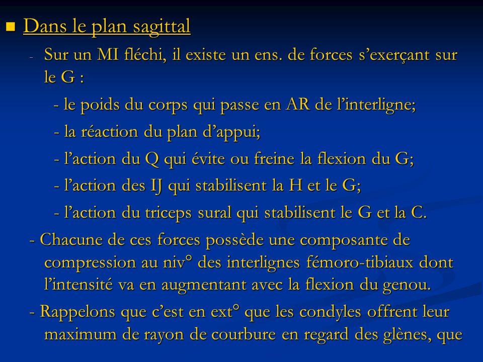 Dans le plan sagittal Sur un MI fléchi, il existe un ens. de forces s'exerçant sur le G : - le poids du corps qui passe en AR de l'interligne;