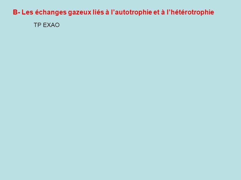 B- Les échanges gazeux liés à l'autotrophie et à l'hétérotrophie