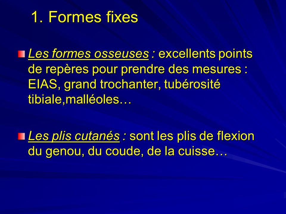1. Formes fixes Les formes osseuses : excellents points de repères pour prendre des mesures : EIAS, grand trochanter, tubérosité tibiale,malléoles…