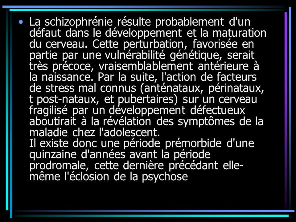 La schizophrénie résulte probablement d un défaut dans le développement et la maturation du cerveau.