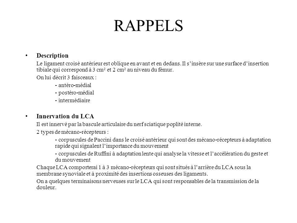 RAPPELS Description Innervation du LCA