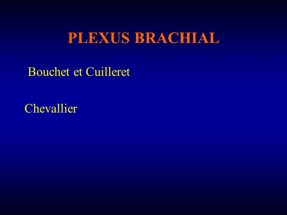 PLEXUS BRACHIAL Bouchet et Cuilleret Chevallier