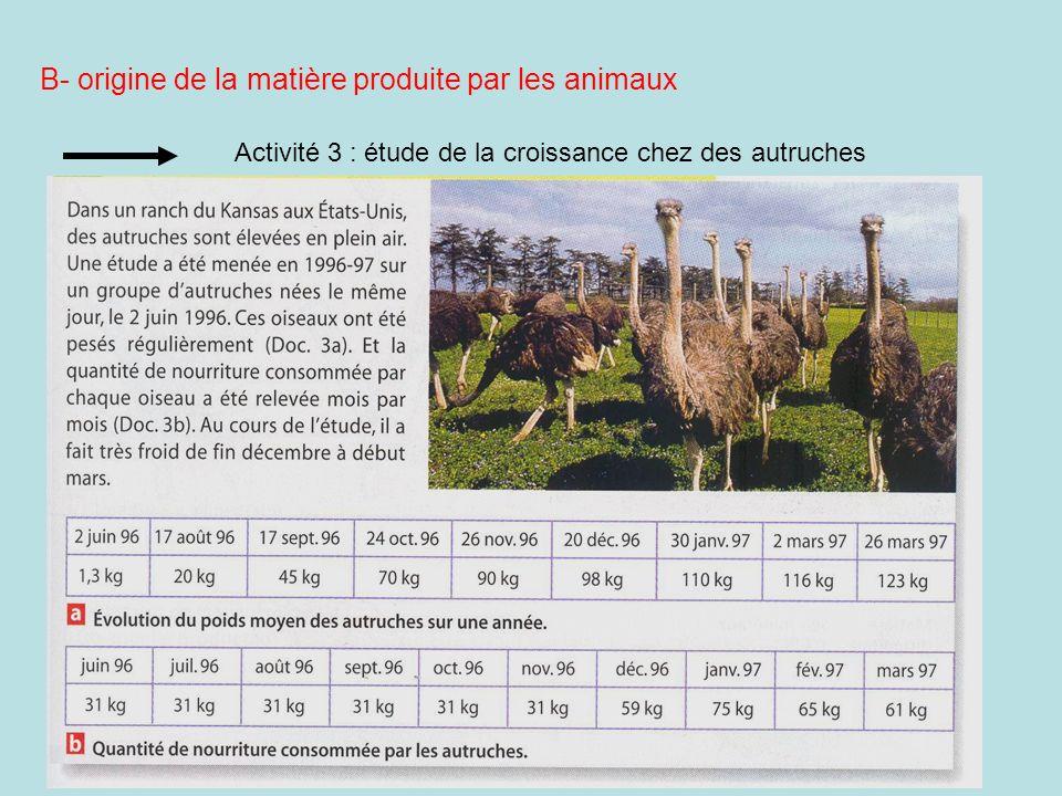 Activité 3 : étude de la croissance chez des autruches