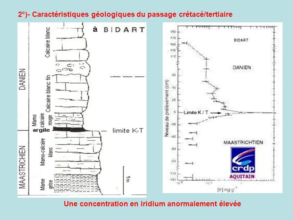 Une concentration en iridium anormalement élevée