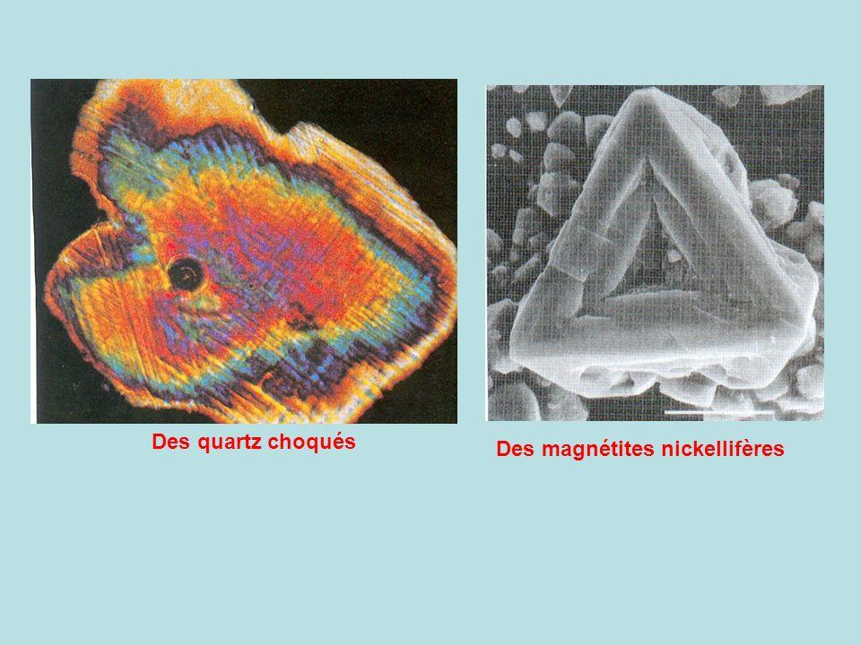 Des magnétites nickellifères