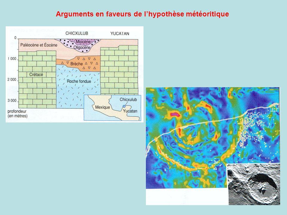 Arguments en faveurs de l'hypothèse météoritique