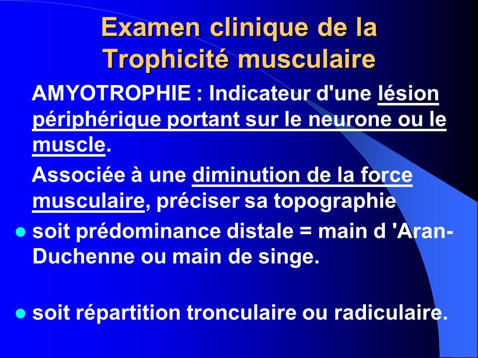 Examen clinique de la Trophicité musculaire