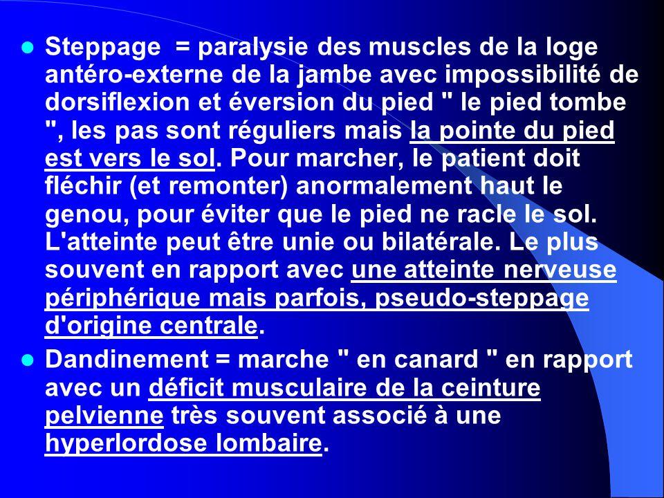 Steppage = paralysie des muscles de la loge antéro-externe de la jambe avec impossibilité de dorsiflexion et éversion du pied le pied tombe , les pas sont réguliers mais la pointe du pied est vers le sol. Pour marcher, le patient doit fléchir (et remonter) anormalement haut le genou, pour éviter que le pied ne racle le sol. L atteinte peut être unie ou bilatérale. Le plus souvent en rapport avec une atteinte nerveuse périphérique mais parfois, pseudo-steppage d origine centrale.