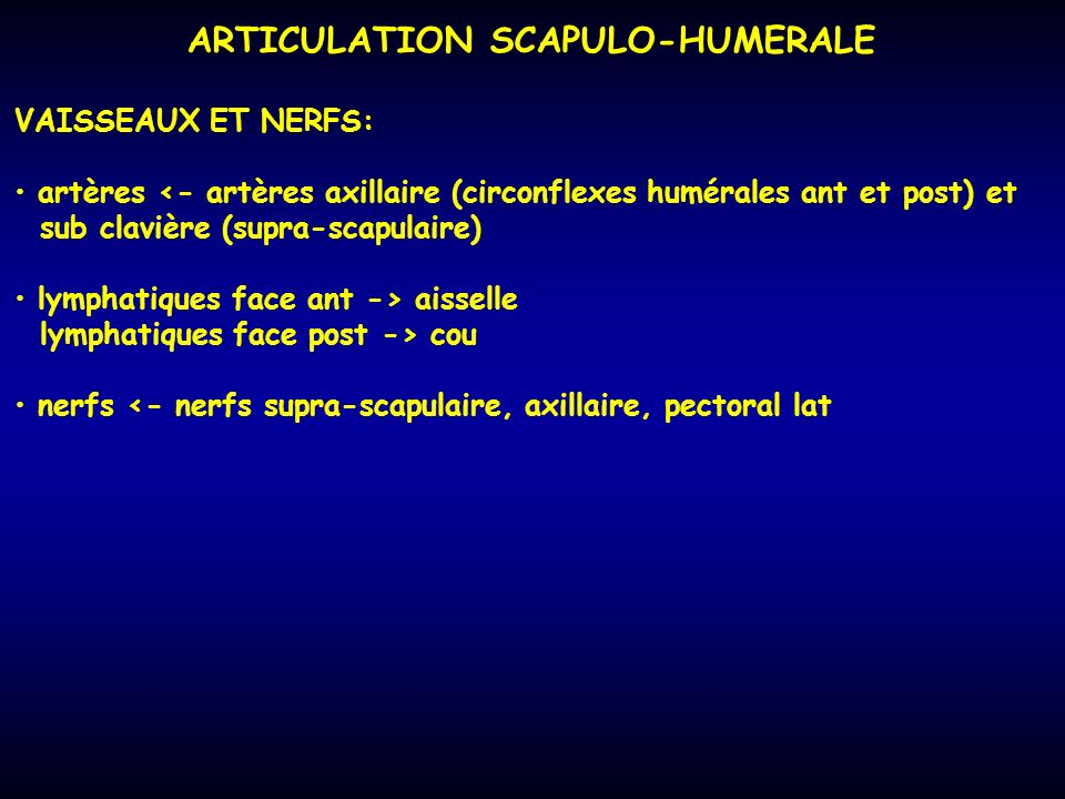 ARTICULATION SCAPULO-HUMERALE