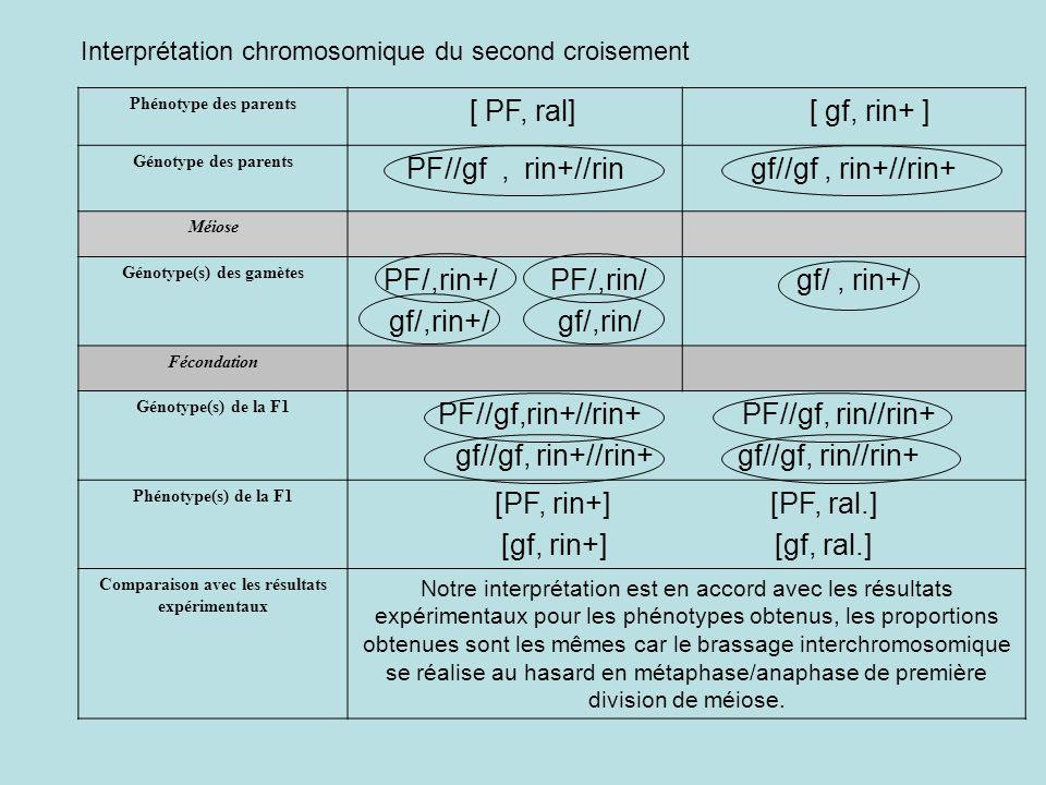 Génotype(s) des gamètes Comparaison avec les résultats expérimentaux