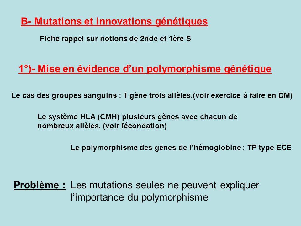 B- Mutations et innovations génétiques